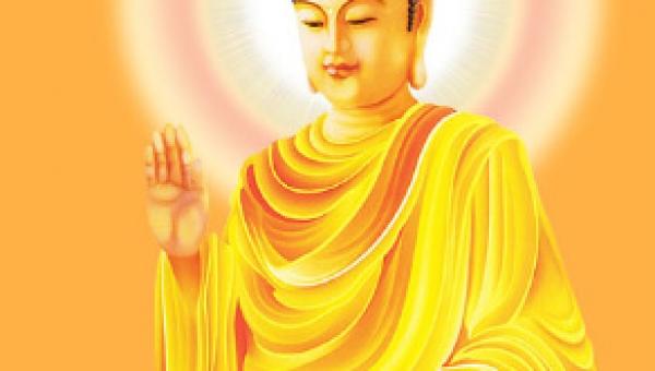 Sistema Buda Universal