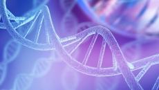 Seven Reiki: DNA Serviço Magnético